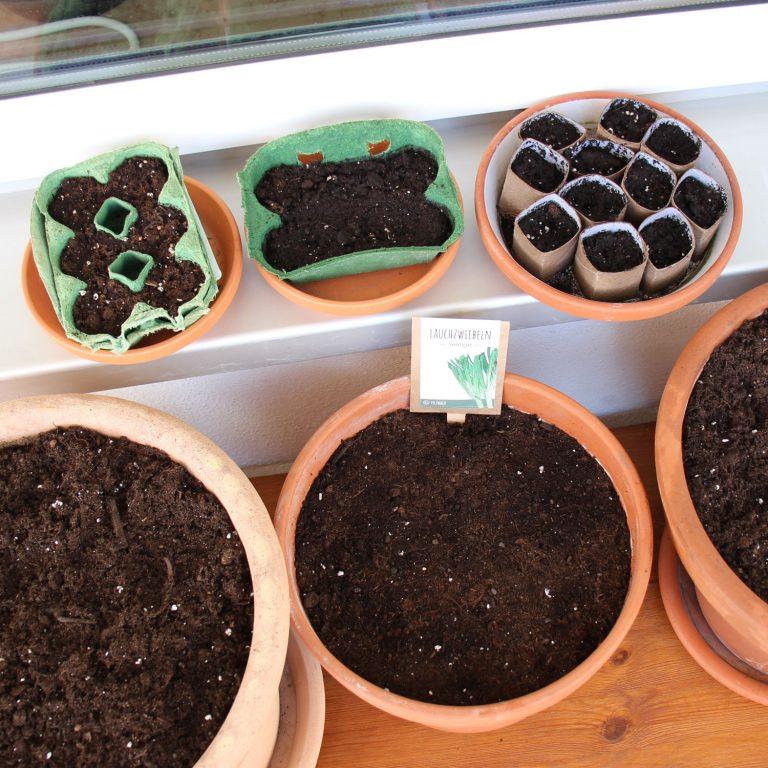 DiY Anzuchttöpfe basteln - kostenlos & kompostierbar 3