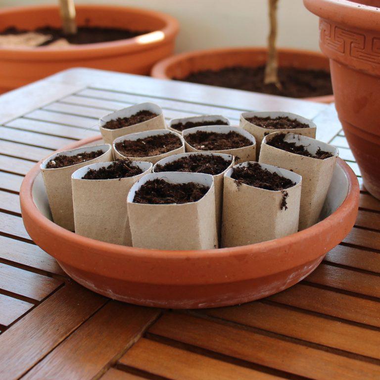 DiY Anzuchttöpfe basteln - kostenlos & kompostierbar 2