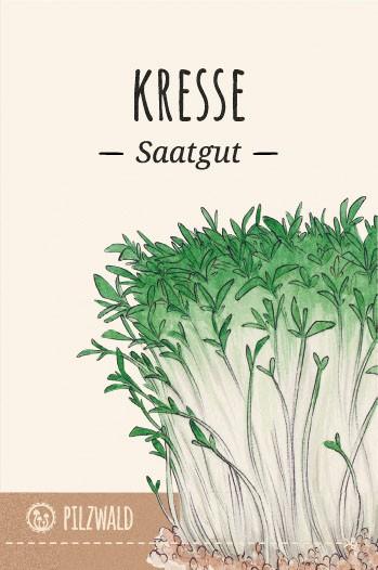 MycoGreens Saatgut Set - 8 alte Sorten Gemüse samenfest 8