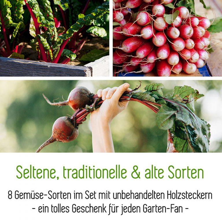 Saatgut-Box-Geschenkset-MycoGreens-Pilzbeet-Samen-Gemuese-800.jpg